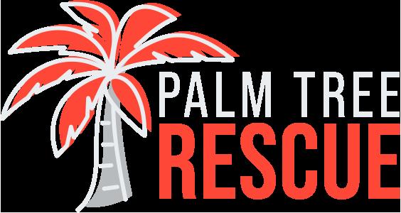 Palm Tree Rescue